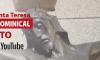 Eucaristía Dominical DIRECTO