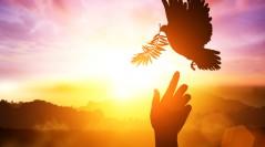 Vivir al aire del Espíritu
